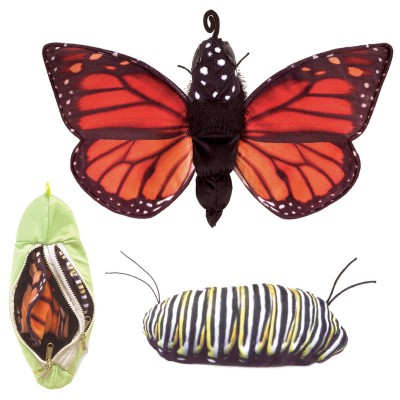 Metamorphose Schmetterling - Folkmanis