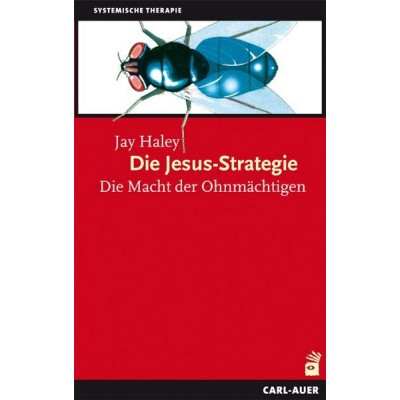 Die Jesus-Strategie
