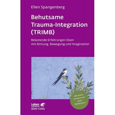 Behutsame Trauma-Integration (TRIMB)