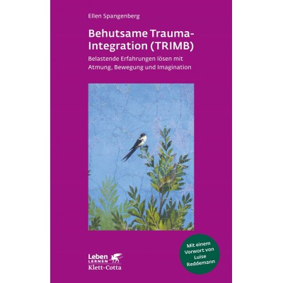 Behutsame Trauma-Integration (TRIMB) (REST)