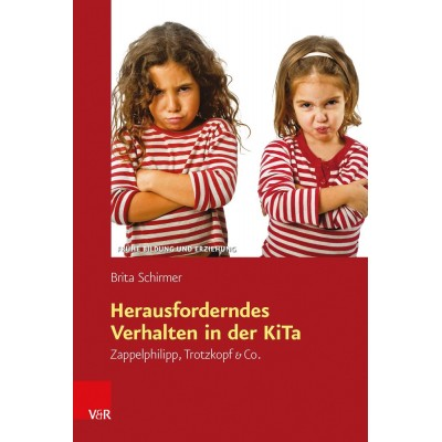 Herausforderndes Verhalten in der KiTa (REST)